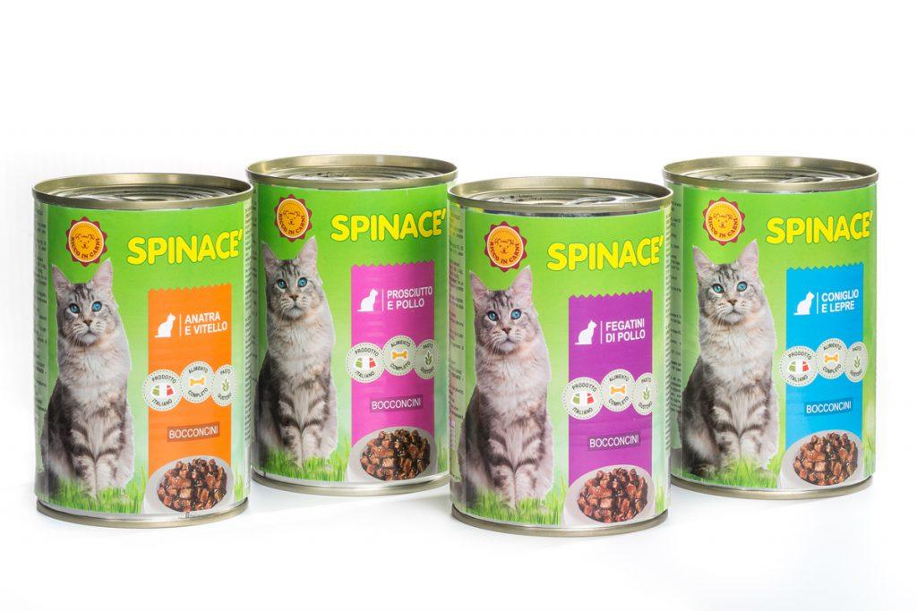 spinace_gatto