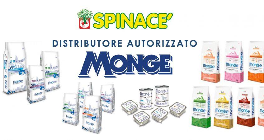 venditore MONGE treviso venezia