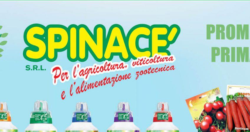Promozione_Primavera_Faè