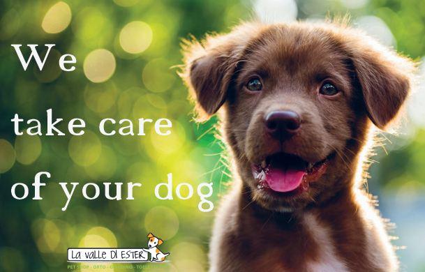 we-take-care-1