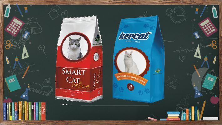 lavagna-smart-cat-x-sito