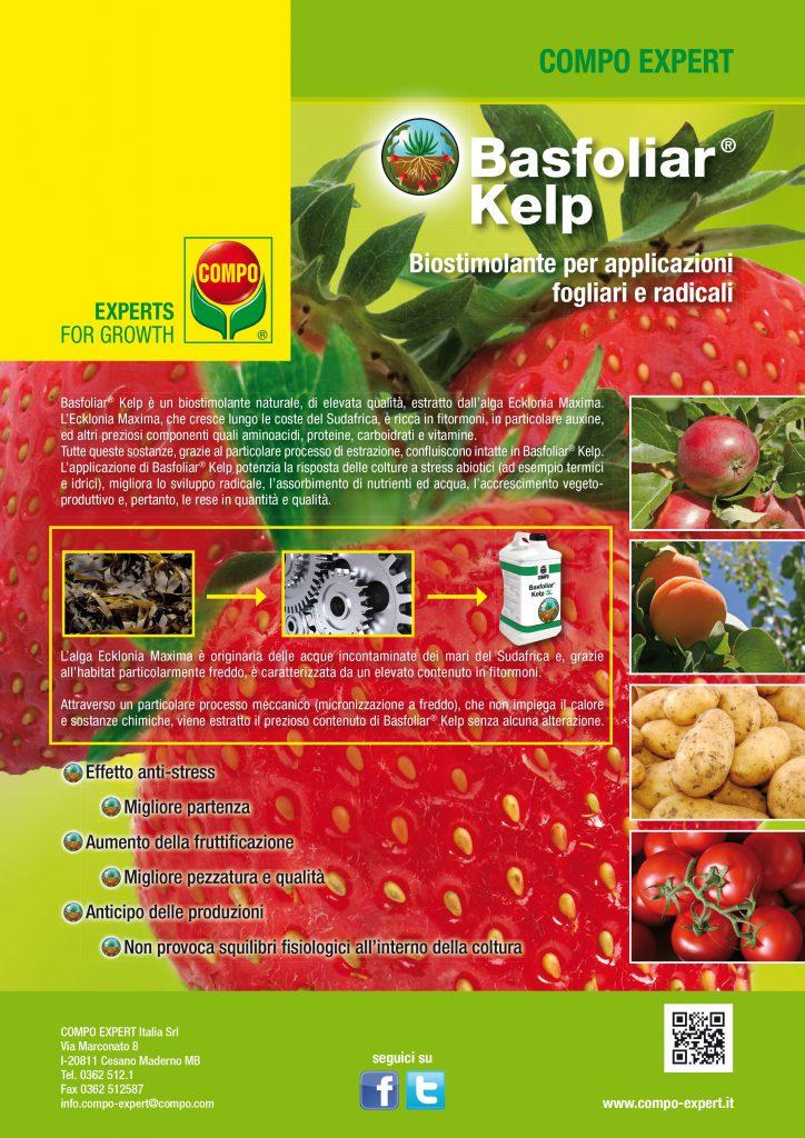 BasfoliarKelp.indd