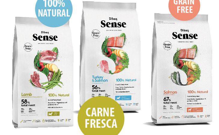 sense-x-sito-spinace