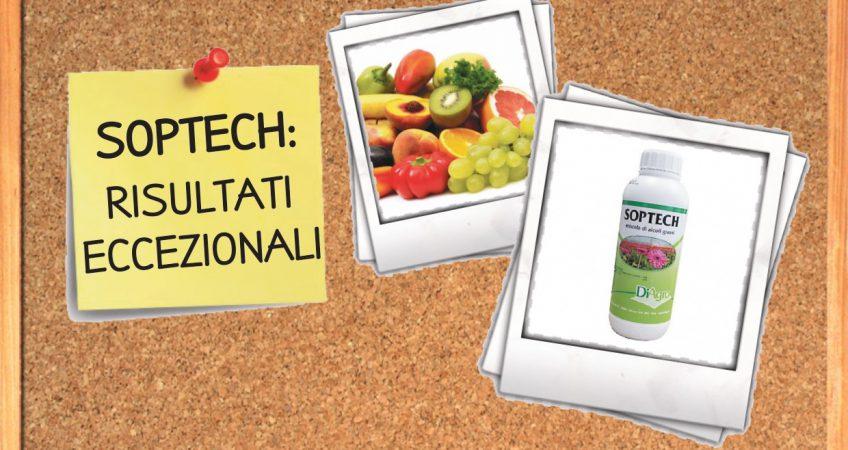 copertine-sito-valledi_page-0001-12